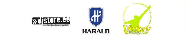 Harald Lepisk - ettevõtlus